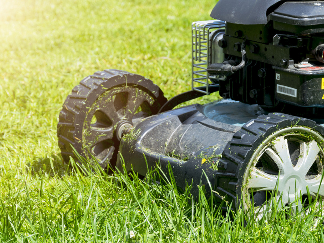 Customize Your Lawn Care in Lafayette, LA