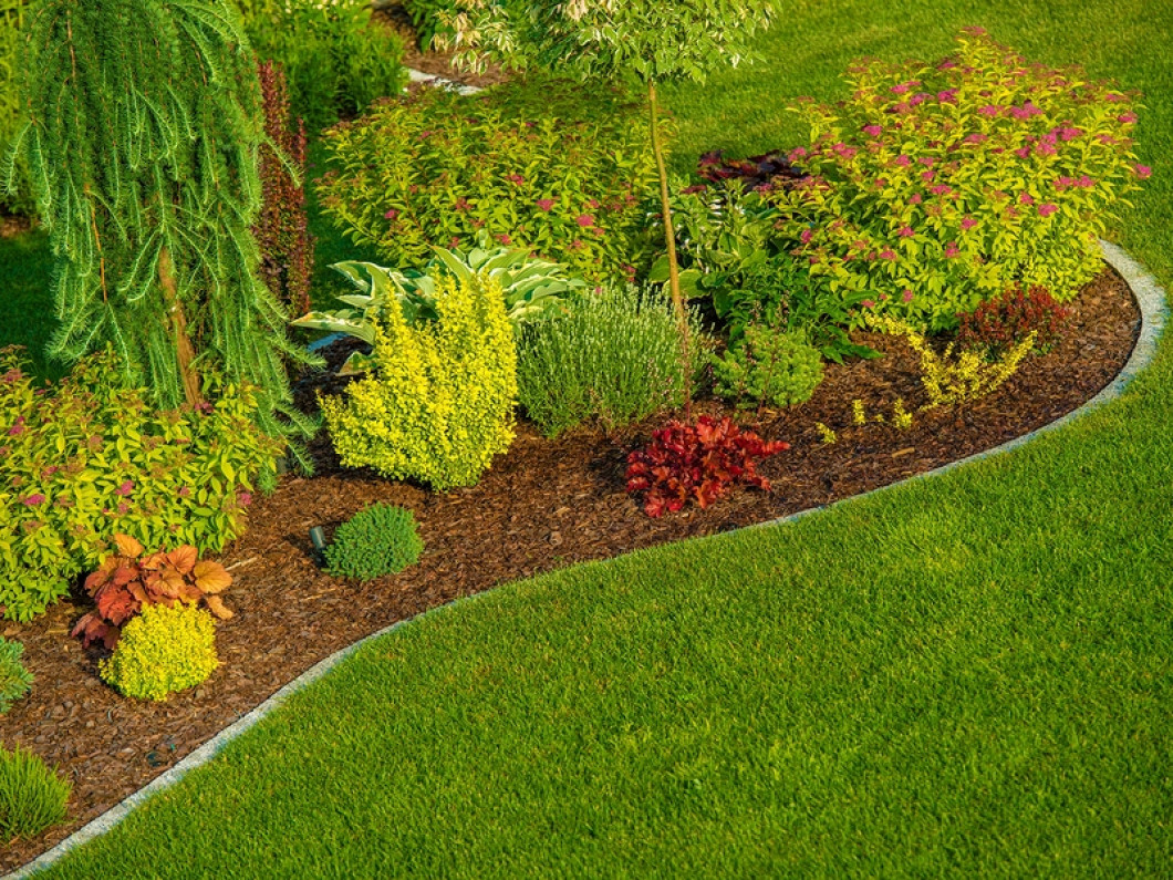 Maintain Flower Beds Full of Blooms